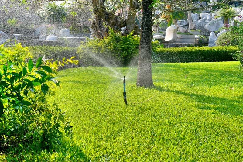 Irrigation Services